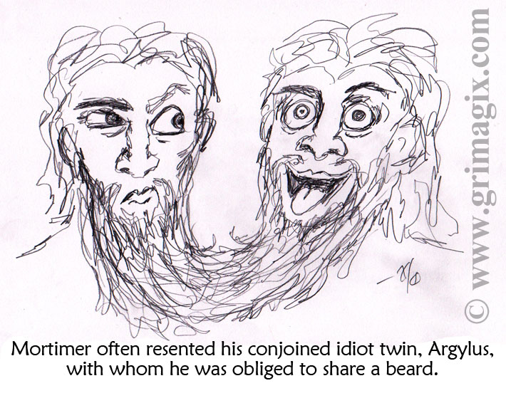 """Two men joined at the tip of their very long beard. One looks annoyed; the other looks like a loud, crazy person. The caption reads: """"Mortimer often resented his conjoined idiot twin, Argylus, with whom he was obliged to share a beard."""""""